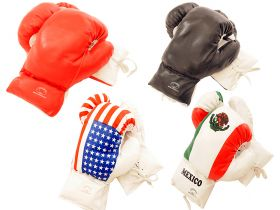 16oz Boxing Gloves in 4 Different Styles