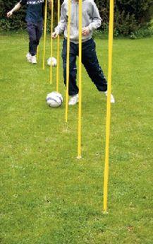 Goal Coaching Poles