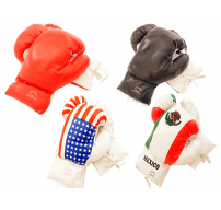 12oz Boxing Gloves Pair